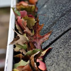 Clogged gutters filled with fall leaves  in Julian