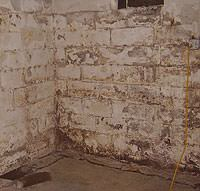 Peeling, Chipping, Basement Wall Coatings in Osceola Mills